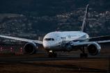 穏やかな夕暮れ 「Boeing 787 Dreamliner」
