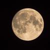 満月の前日