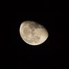 昨日の月  nikon1