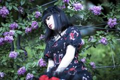 「薔薇と刺と刹那心」