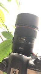 85mm F1.4L IS USM