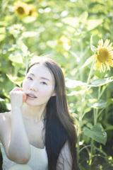 「sunflower」2
