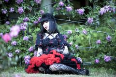 「薔薇と刺と刹那心」2