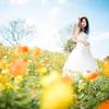 「Fall flowers」5