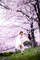 「つぼみから春の風を浴びて瞳を開けるの、あなたに出逢うために。」