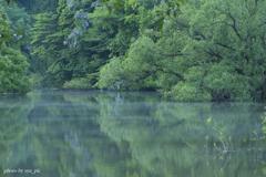 室生湖のちょい靄