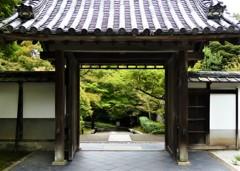 絵になる京都
