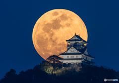 岐阜城にのぼる名月