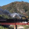 紅葉と鉄橋