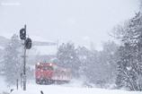 降り続く雪の中