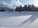 雪に伸びる影