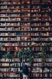 Bookshelf like a wall