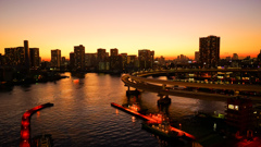 Tokyo Bayside