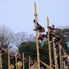 出初式「加賀鳶梯子登り」