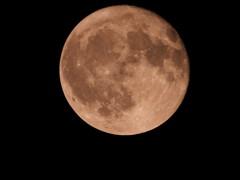 月齢16.43/立待月