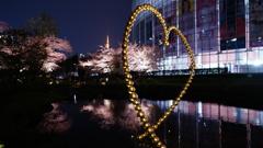 毛利庭園の桜、ハート、東京タワー夜景コラボ