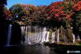 晩秋の滝と虹と