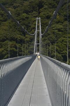 吊橋もへっちゃら!