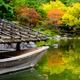係留舟の秋