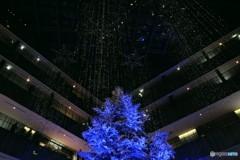 Kittte Blue Christmas