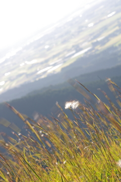 展望所から眺める田舎1