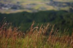 展望所から眺める田舎2