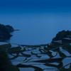 Hamanoura turns blue