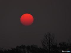 昇る赤い太陽