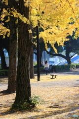 昼下がりの芝公園