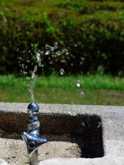 玉川上水の源を訪ねる03