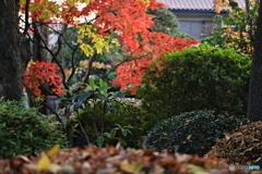 秋宴の時 4