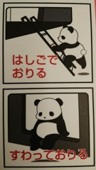 説明パンダさん