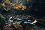 秋の光の中で ~赤目四十八滝Ⅲ~