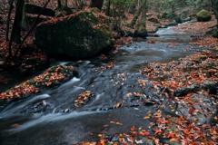 秋が流れゆく渓 ~るり渓の秋Ⅳ~