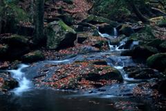 秋を纏う渓 ~るり渓の秋Ⅶ~