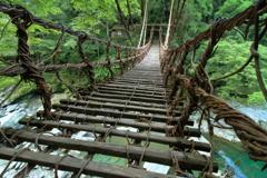 希望への架け橋  ~祖谷のかずら橋Ⅲ~