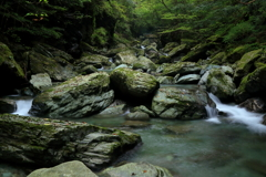 魅惑の渓流 ~安居渓谷Ⅱ~