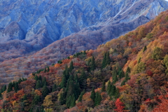 真実 ~大山の紅葉~