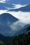 小入峠の雲海
