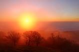 仙境の夜明け