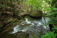 初夏の渓流 ~鶏鳴八滝~