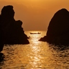 初漁 ~横浪半島、五色の浜より~