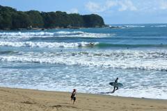 サーファーの楽園 ~高知、大岐の浜~