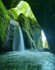 神秘の世界 ~シワガラの滝~