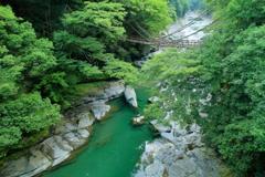 祖谷のかずら橋Ⅱ