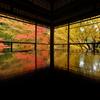 瑠璃光院秋景