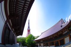 東京タワーと増上寺