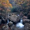 渓谷の秋 ~赤目四十八滝Ⅰ~