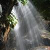 朝陽と涼をもとめて ~金引の滝 Ⅱ~