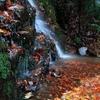渓の宝石箱 ~るり渓の秋Ⅵ~